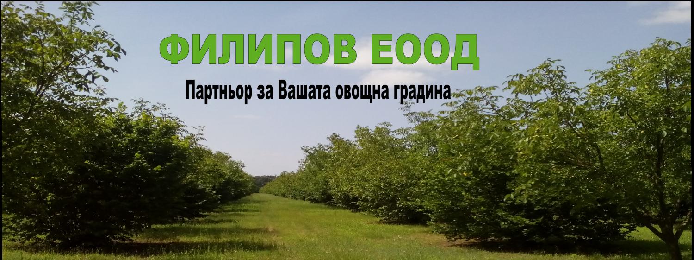 ФИЛИПОВ ЕООД